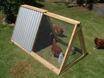 Chicken coops really life of an architect for Diy movable chicken coop