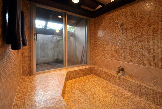 Entry View of shower
