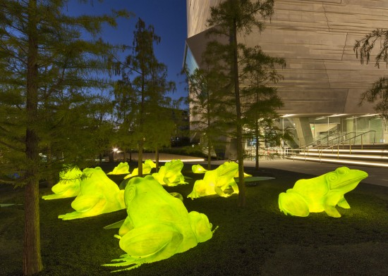 Science Park with leap-frog forest - Mark Knight Photography