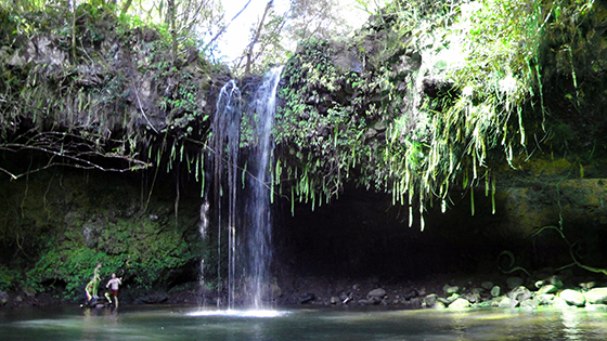 Hawaii 2009
