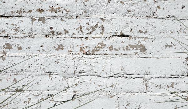 Paint Peeling off Standard Brick