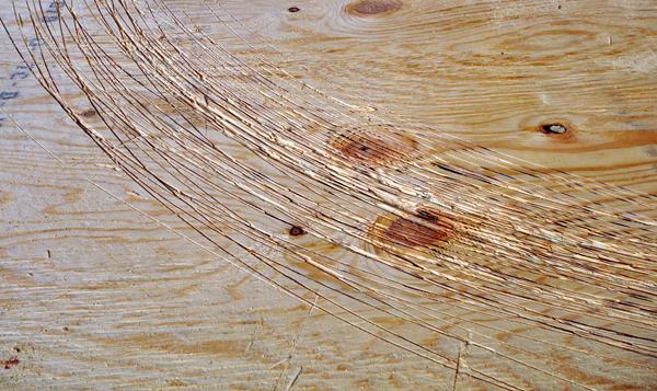 radius cuts on plywood