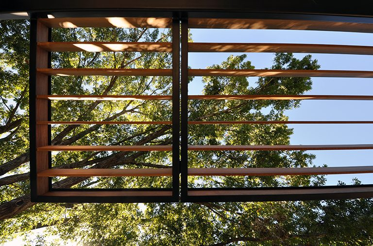 steel and wood trellis - looking up
